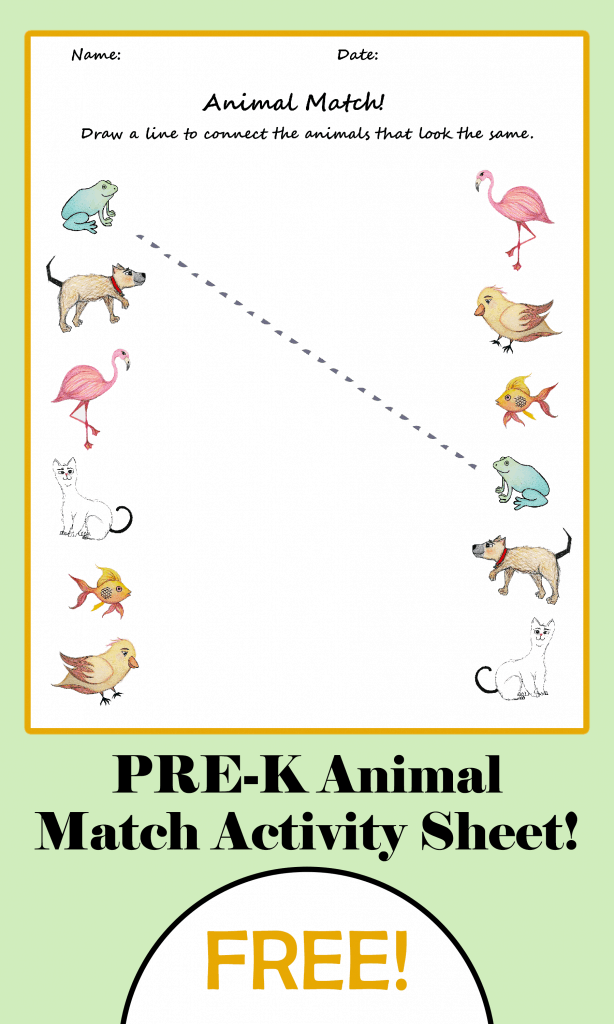 Pre-K Animal Match Activity Sheet!