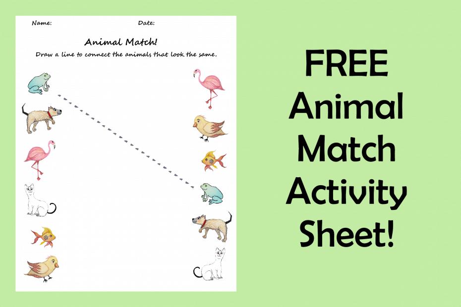 Pre-K Fine Motor Animal Matching Activity Sheet