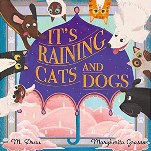 It's Raining Cats and Dogs Picture Book