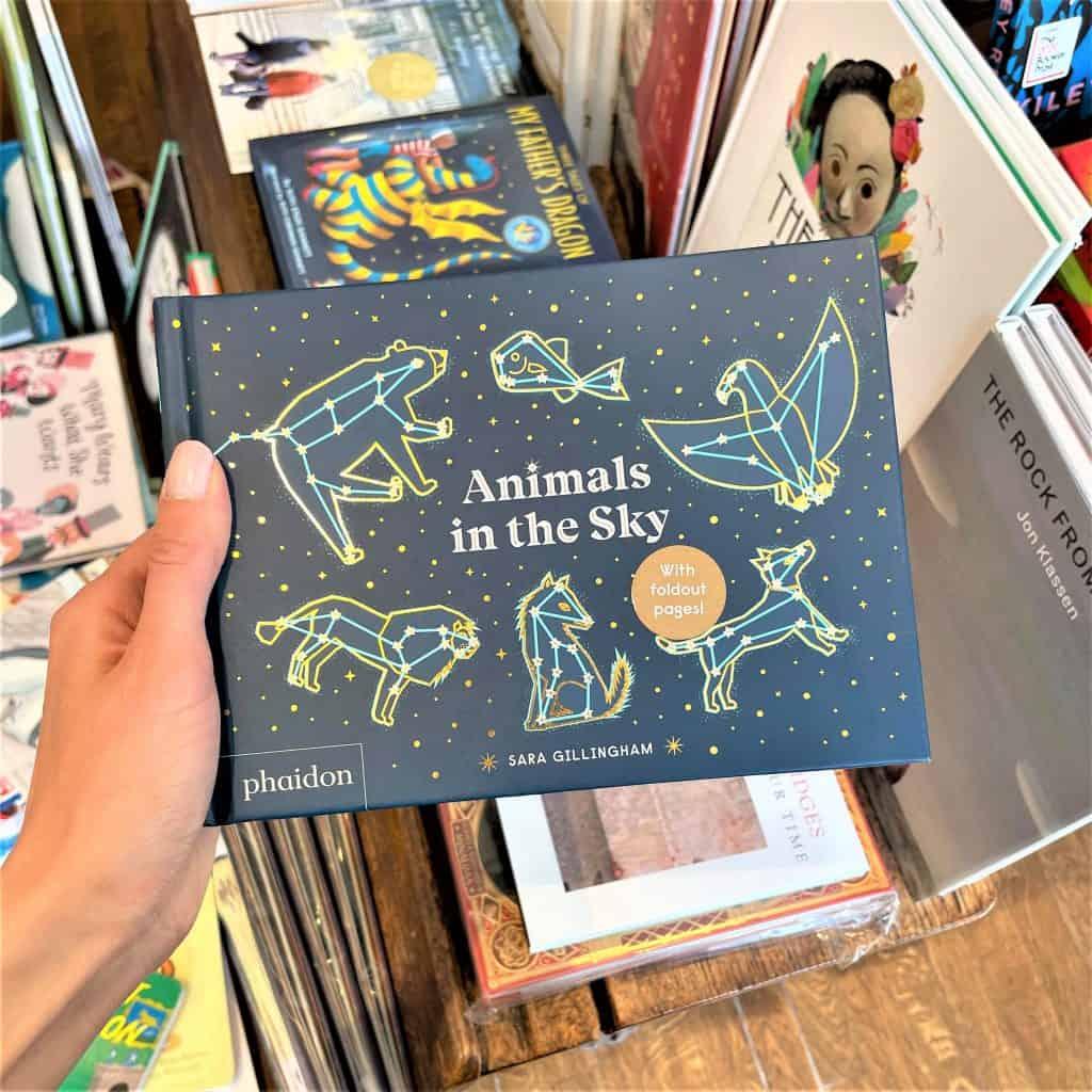 """Animals in the Sky"" Preschool Picture Book."